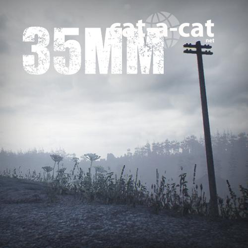 35MM (2016) PC | ��������